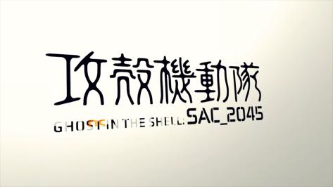 GitS SAC_2045